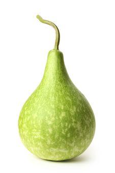 Free Gourd Stock Photos - 20613773