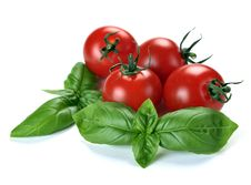 Free Leaves Of Basil And Tomatoes Royalty Free Stock Photo - 20614785