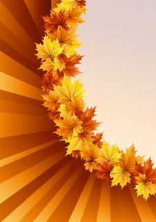 Free Autumn Variation Royalty Free Stock Photography - 20616657