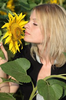Beauty Woman And Sunflowers Stock Photography