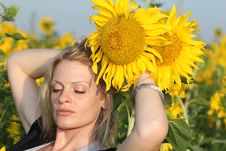Beauty Woman And Sunflowers Royalty Free Stock Photo