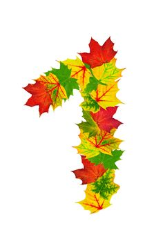 Free Autumn Maple Leaves In The Shape Of Number One Royalty Free Stock Photos - 20617398