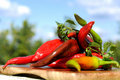 Free Red Hot Peppers Royalty Free Stock Images - 20621019