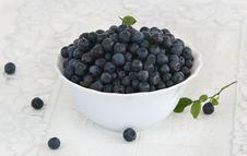 Free Bilberries Stock Photo - 20620260