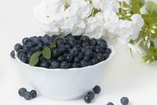 Free Bilberries Royalty Free Stock Photo - 20620275