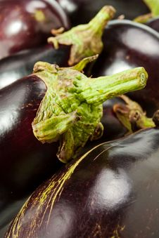 Free Eggplants Royalty Free Stock Photography - 20624427
