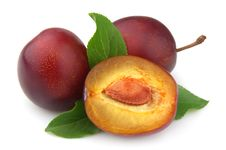 Free Sweet Plums Stock Photography - 20625032