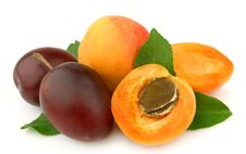 Free Apricot And Plums Royalty Free Stock Photos - 20625058