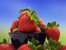 Fresh Healthy Strawberries On White Stock Photos