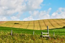 Stile And Cornfield Royalty Free Stock Photo