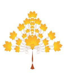 Free Autumn Tree Royalty Free Stock Photo - 20626125