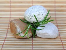 Free Stones And Rosemary Royalty Free Stock Image - 20626906