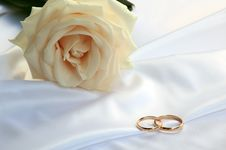Free Wedding Rings And A Tea Rose Royalty Free Stock Photography - 20627507