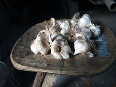 Free Detail Of Garlic Stock Images - 20628674