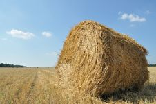 On The Sloping Field Of Wheat Is A Big Stack Of Tw Royalty Free Stock Photo