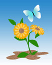 Free Butterfly Garden Royalty Free Stock Photography - 20635587