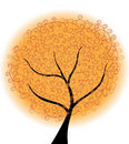 Free Abstract Autumn Tree Royalty Free Stock Photography - 20639497