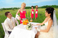 Free Bride And Groom Sitting At Wedding Table Stock Photos - 20639803