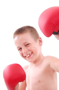 Free Little Boy Boxer Royalty Free Stock Photography - 20630827