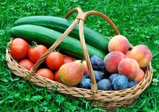 Free Group Of Vegetables And Fruits Royalty Free Stock Photos - 20631018