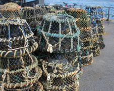 Free Lobster Pots Stock Images - 20634964