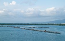 Free Fish Farm In The Sea Stock Images - 20636114
