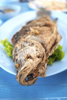 Free Fried Fish Royalty Free Stock Photography - 20637957