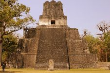 Free Guatemala - Mayan Pyramid Stock Photography - 20638842