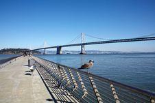 Free San Francisco Bay Bridge Stock Photos - 20639663