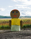 Free Straw Woman Staying On The Field Stock Photography - 20643622