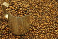 Free Coffee Beans Stock Images - 20645124