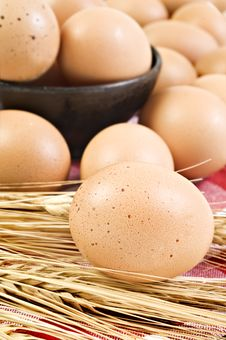 Fresh Healthy Eggs From The Farm Stock Photo