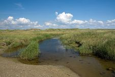 Landscape On Romo, Denmark Stock Photos