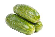 Three Cucumbers Stock Photography