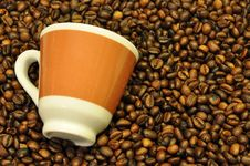 Free Cup And Beans Stock Photos - 20644743