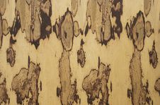 Free Plywood Background Royalty Free Stock Images - 20648089
