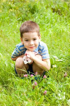 Boy Sitting On The Grass In The Park Stock Images