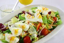 Free Salad Stock Photo - 20649840