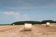 Free Straw Bales Stock Photography - 20650152
