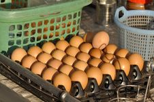 Free Eggs Package Outdoor Full Stock Images - 20651354