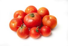 Free Tomatoes Stock Photo - 20652480
