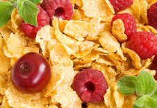 Free Corn Flakes With Berries Stock Photography - 20653002