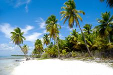 Paradise Beach Royalty Free Stock Images