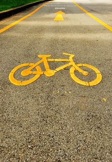 Free Bicycle Track In Lumpini Garden Bangkok Stock Photo - 20654800