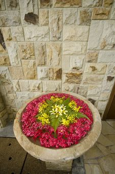 Free Flower In Water Fountain Stock Photo - 20656780