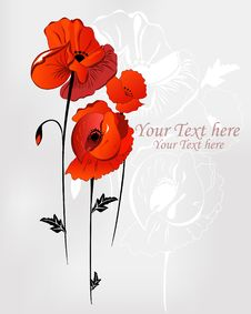 Free Background With Three Poppies Royalty Free Stock Photos - 20656808