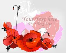 Free Background With Poppies Stock Image - 20656811