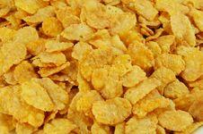 Free Cornflakes Stock Photos - 20656873