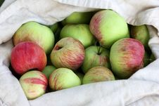 Free Bag Of Red-Green Apples In Summer Royalty Free Stock Photography - 20657917