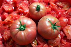 Free Tomatoes Royalty Free Stock Images - 20659589
